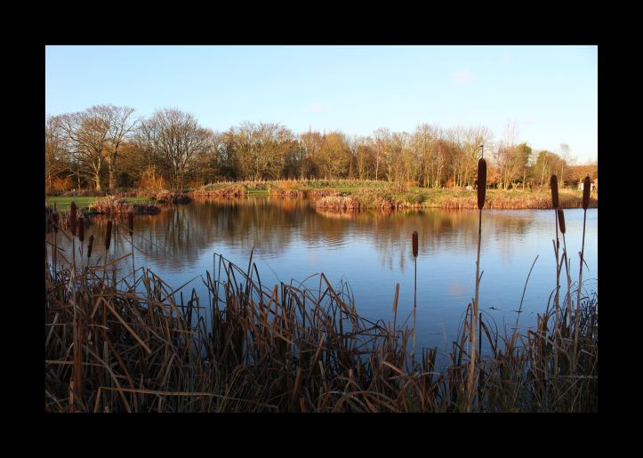 Fishing lake image on my digital photo frame