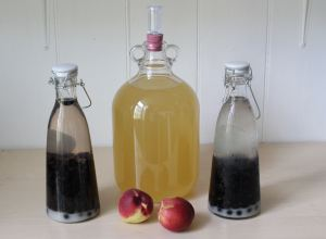 Nectarine Wine and Sloe Gin
