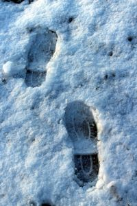 Footprints in pristine snow