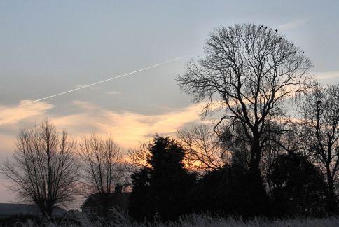 Sunrise over the farm on frosty morning 21st January 2016