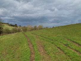 Nettleton Walking