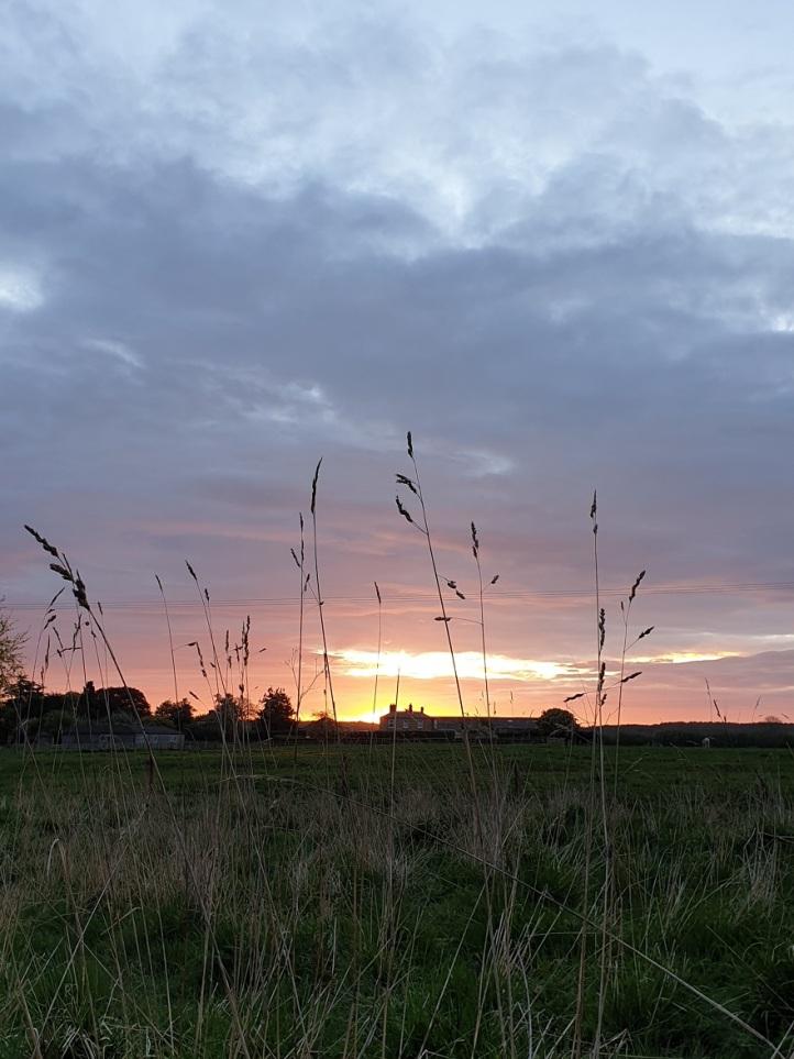 Sunrise 25th April 2019